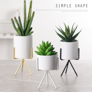 Small Succulent Planter with Metal Gold/Rose Gold Stand Modern Ceramic Minimalist Planter