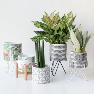 Hot new products straw plaited article handmade Ceramic Indoor Flower pot for home decor