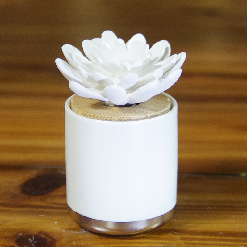 Eco-Friendly Ceramic Essential Oil Diffuser